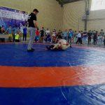 مسابقات کشتی آزاد جوانان جام صنایع شهرستان قدس با برتری تیم میثاق سرخ حصار پایان یافت